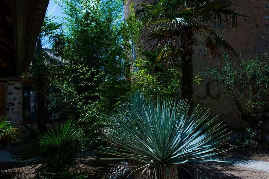 Le domaine de Vallery propose ses jardins au centre de 3 chambres