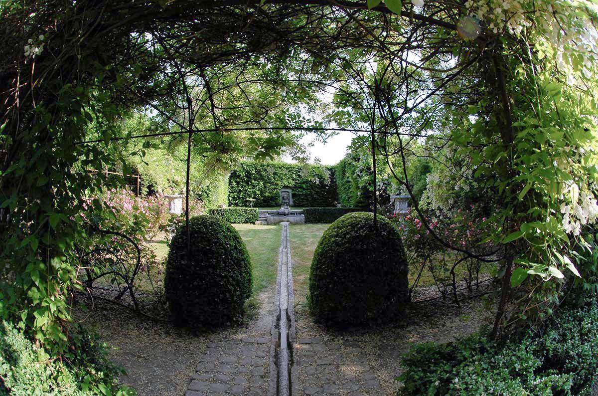 la roseraie du Château de Vallery